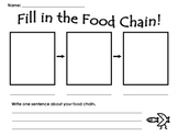 Fill In The Food Chain!