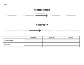 Fill-in Photosynthesis and Respiration Equation Sheet