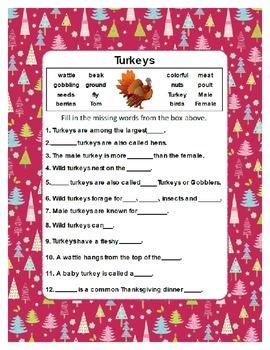 Fill in the Blank  ~ Turkey ~ One Work Sheet ~ Many Seasons / Holidays