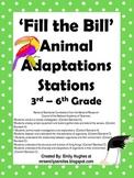 Fill the Bill Animal Adaptation Stations
