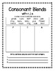 Final Blends -ng, -nt, -nk, -nd and Consonant Blends r, l, s