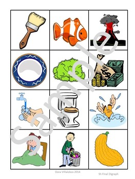 Final Digraphs Picture Sorts