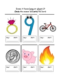 Final E Activities: Spell It. Build It.