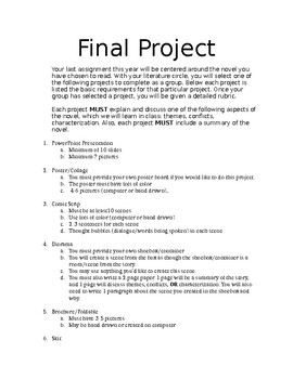 Final Projects for Novels