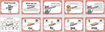 Final Sounds (PowerPoint and worksheets)
