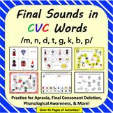 Final Sounds in CVC Words: Apraxia, Final Consonant Deleti