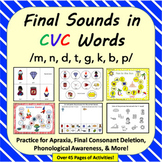 Final Sounds in CVC Words: Apraxia Cards, Final Consonant