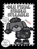 Final Stable Syllable  -dle - Word Work! No Prep!