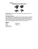 Finch Beak Lab