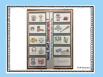 ESL Newcomer Activities Homophone/Homograph Unit 9 ELL Resources