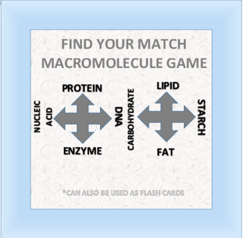 Find Your Match: Macromolecule Game