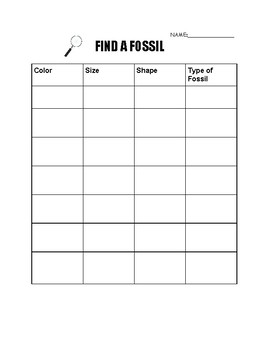 Find a Fossil
