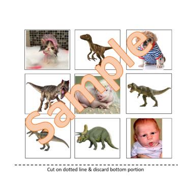 VIPKID Reward System - Find the Dinosaur Reward