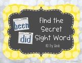 Find the Hidden Sight Words Full Set (80 words)