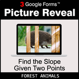 Find the Slope Given Two Points - Google Forms Math Game |