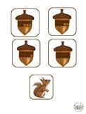 Find the Squirrel Subitizing Math Game