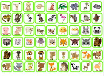 Find the right animal - Enquête sur les animaux:  observation