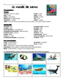 Finding Nemo Worksheet in French / Le monde de Nemo