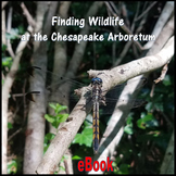 Finding Wildlife at the Chesapeake Arboretum (Non-fiction E-book) - Virginia