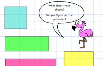 Finding the Perimeter (with adorable flamingo!)