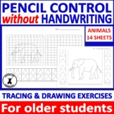 Fine Motor Control Occupational Therapy for older students