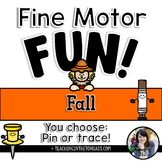 Fine Motor Activities (Fall)