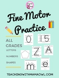Fine Motor Practice - Letters, Numbers, and Shapes