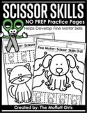 Fine Motor Scissor Skills