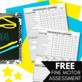Fine Motor Skills Checklist | Assessment for Preschool, Pr