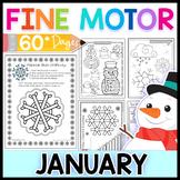 Fine Motor Skills: January Activity Pack