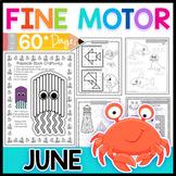 Fine Motor Skills: June Activity Pack