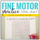 Fine Motor Skills Practice (Hundreds Charts)