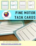 Autism, Special Education, Kindergarten-Fine Motor Task Ca