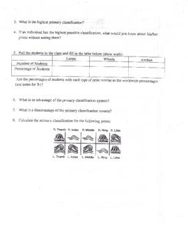 Finger Prints Primary Classifiction Activity