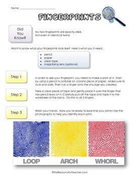 Science Activity - Classify Fingerprints Lesson Plan & Worksheet Packet