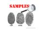 Fingerprint Mystery Science Project