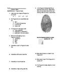 Fingerprint Quiz