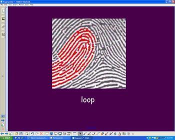 Fingerprint Sorting Interactive Whiteboard Activity