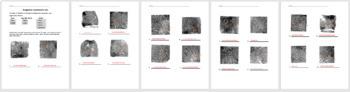 Fingerprint Test - Quiz Bundle with Answer Keys