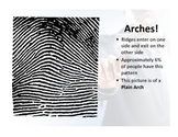 Fingerprints for Middle School