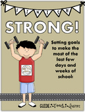 Finish Strong - Setting Goals for Ending the School Year w