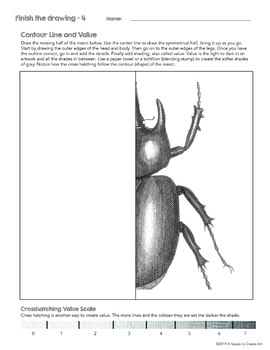 Finish the Drawing Worksheets - INSECTS - 10 Worksheets - Value - Contour Lines