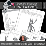 Finish the Drawing Worksheets - INSECTS - 10 Worksheets -