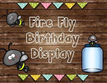 Fire Fly Birthday Display