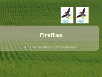 Fireflies Power Point