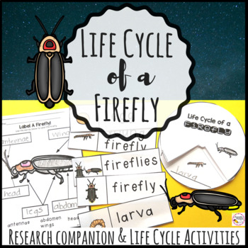 Firefly Life Cycle and Research Companion