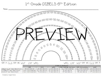 First (1st) Grade DIBELS 6th Edition Rainbow without PSF and RTF