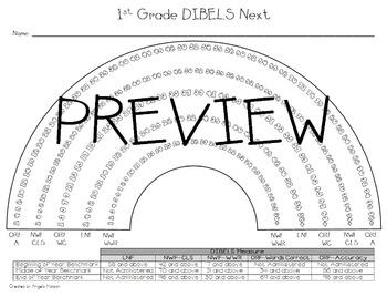 First (1st) Grade DIBELS Next Rainbow Mini Pack