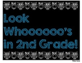 First Day of School Picture Sign Owl Theme