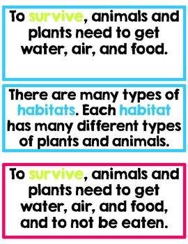 First Grade: Amplify Science Focus Wall- Unit 1- Animal and Plant Defenses